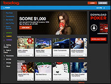 Bodog Poker Review